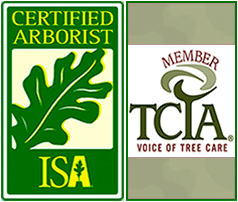 ISA and TCIA tree service association logos
