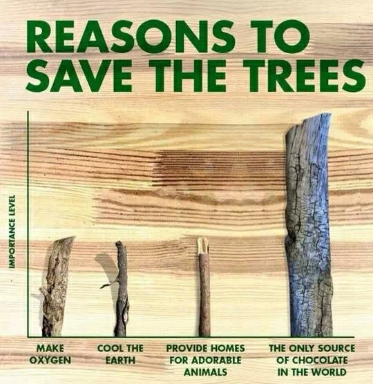 reasons to save houston area trees