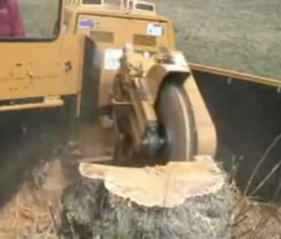 stump grinding in Houston TX