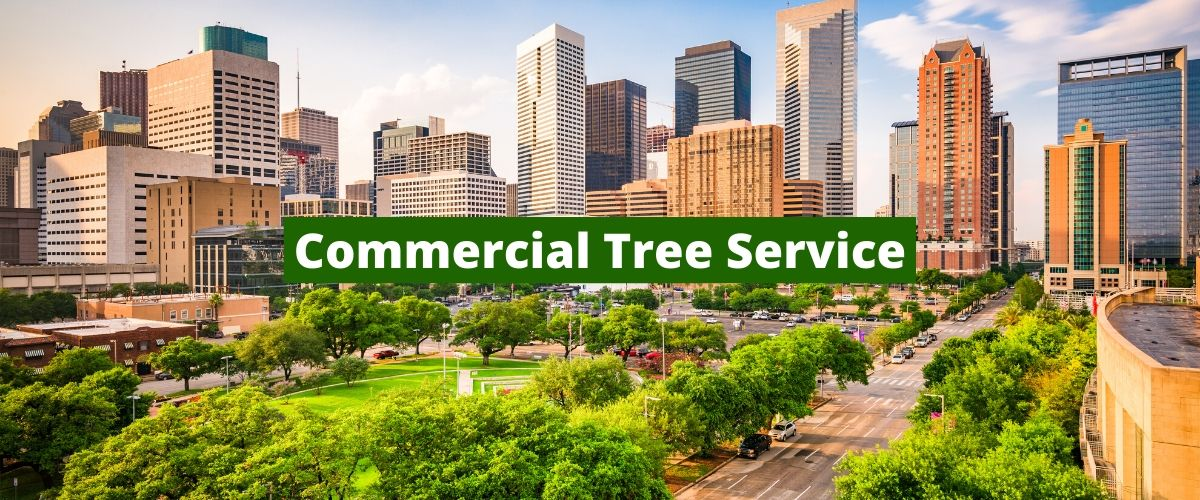 commercial tree service houston tx