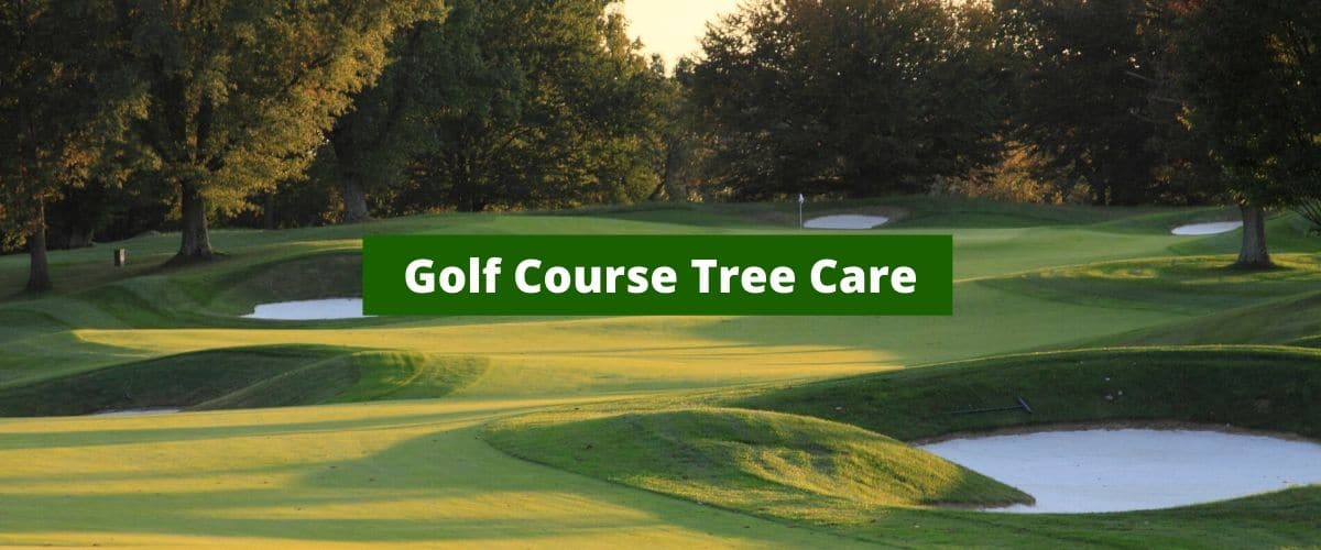 Golf Course Tree Care